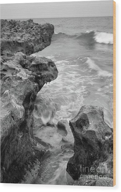 Waves And Coquina Rocks, Jupiter, Florida #39358-bw Wood Print