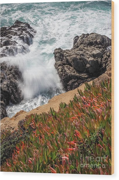 Waves And Rocks At Soberanes Point, California 30296 Wood Print