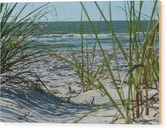 Waves Through The Grass Wood Print