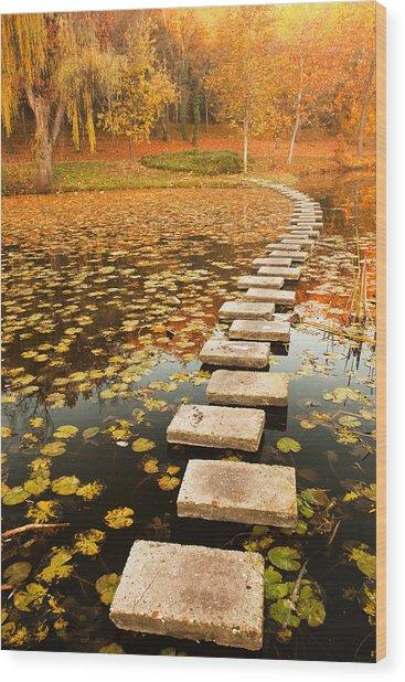Way In The Lake Wood Print