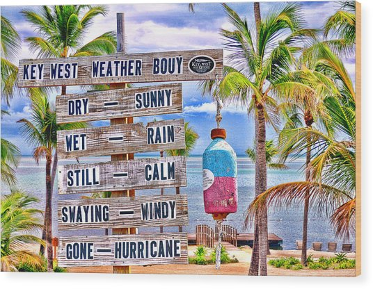 Weather Bouy Wood Print by Steve Cole