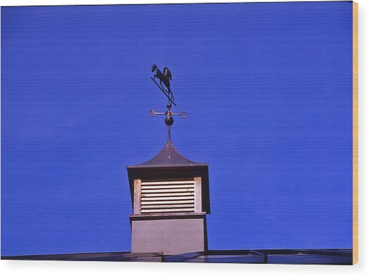 Weather Vane Wood Print by Randy Muir