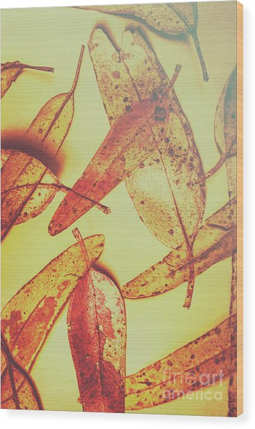 Weathered Autumn Leaves Wood Print