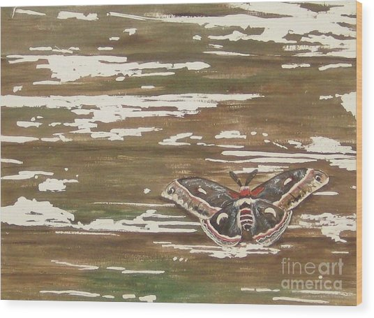 Weathered Wood Print by Carla Dabney