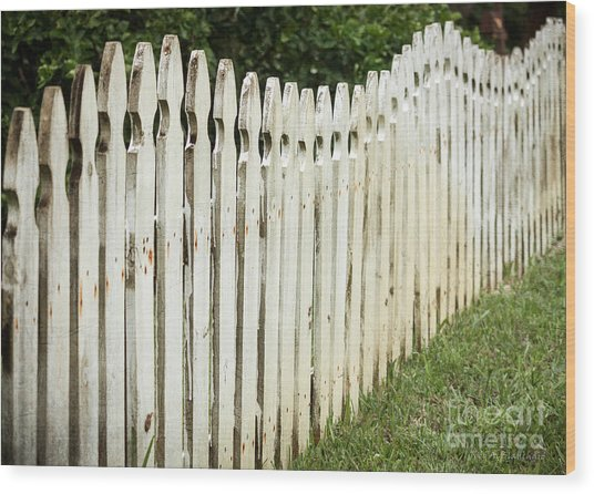 Weathered Fence Wood Print