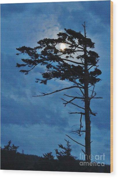 Weathered Moon Tree Wood Print