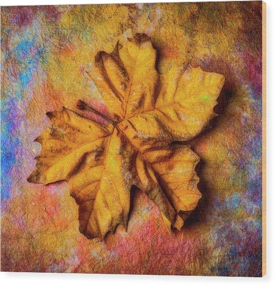 Weathered Worn Autumn Leaf Wood Print