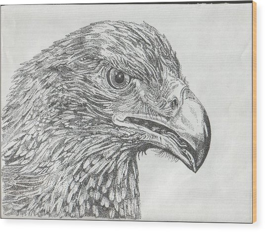 Wedgetail Eagle Wood Print by Leonie Bell