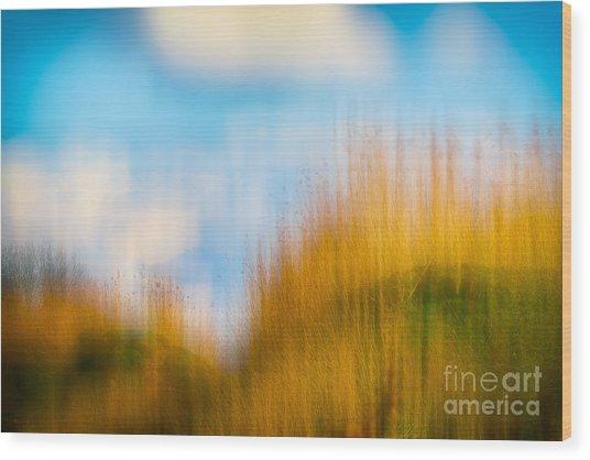 Weeds Under A Soft Blue Sky Wood Print