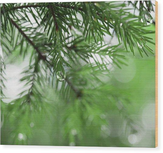 Weeping Pine 2 Wood Print