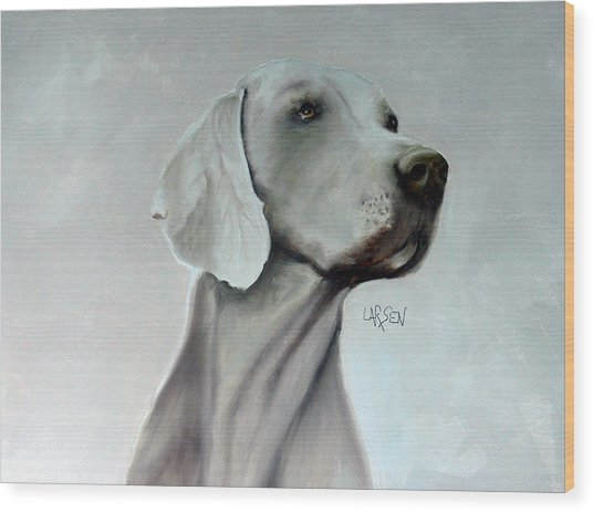 Weimaraner Wood Print by Dick Larsen