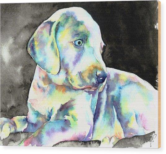 Weimeraner Puppy Wood Print
