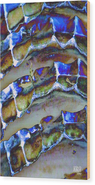 Welk Shell Wood Print by Michele Caporaso
