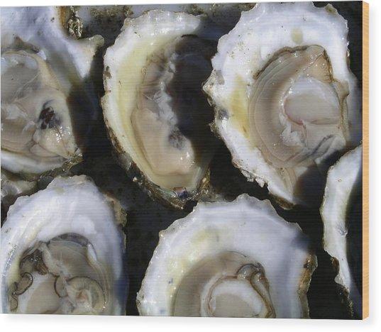 Wellfleet Oysters Wood Print