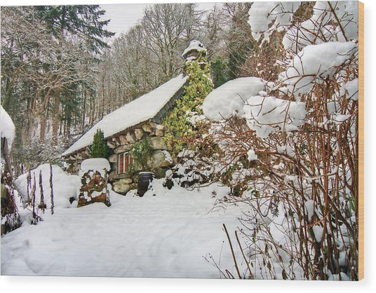 Welsh Cottage Wood Print by Richard Outram