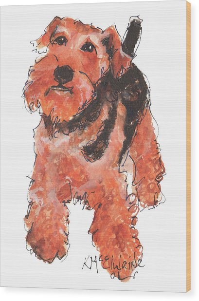 Welsh Terrier Or Schnauzer Watercolor Painting By Kmcelwaine Wood Print