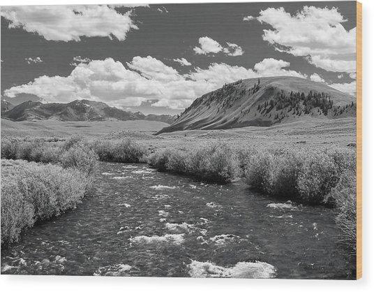 West Fork, Big Lost River Wood Print