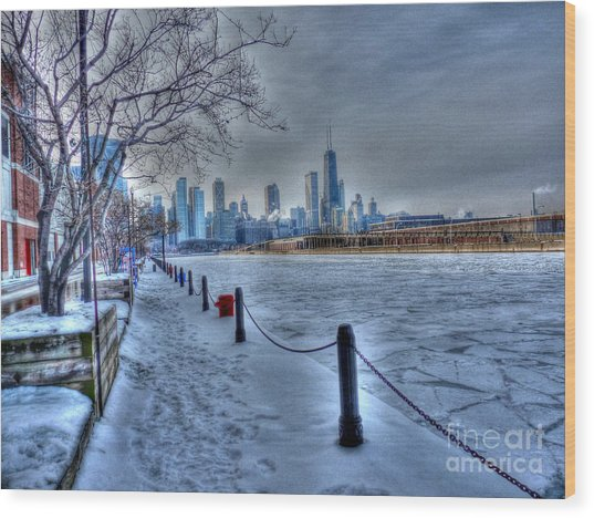 West From Navy Pier Wood Print