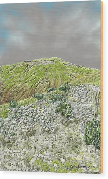 West Of The Hill Country Wood Print