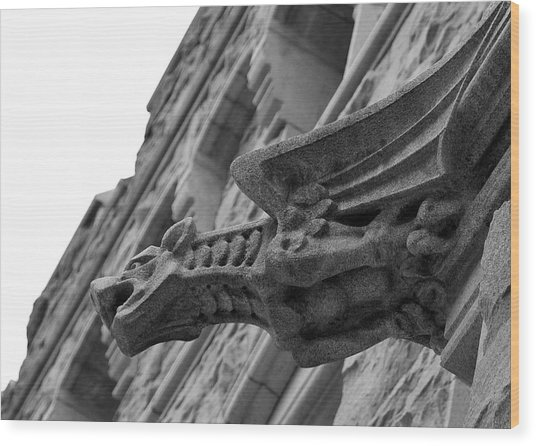 West Point Gargoyle Wood Print