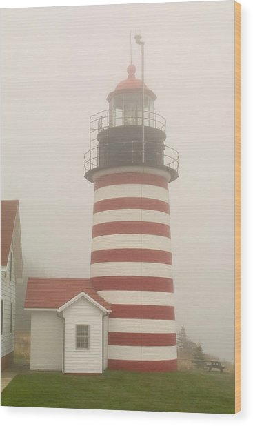 West Quody Head Lighthouse Wood Print
