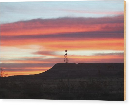 Mile Marker 122 West Texas Sunrise Wood Print