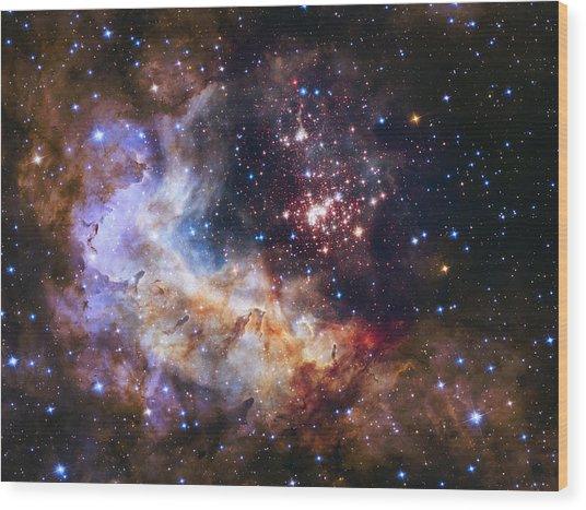 Westerlund 2 - Hubble 25th Anniversary Image Wood Print