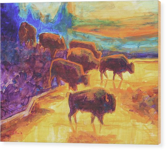 Western Buffalo Art Bison Creek Sunset Reflections Painting T Bertram Poole Wood Print