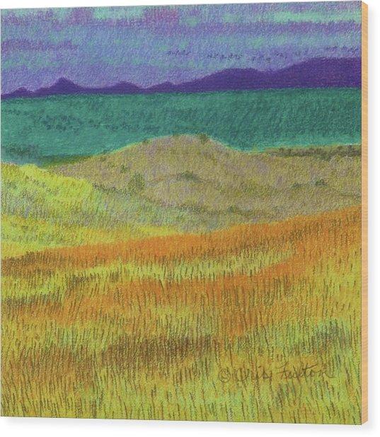 Western Edge Prairie Dream Wood Print