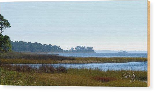 Western Florida Panhandle Wood Print by Paul Gaj