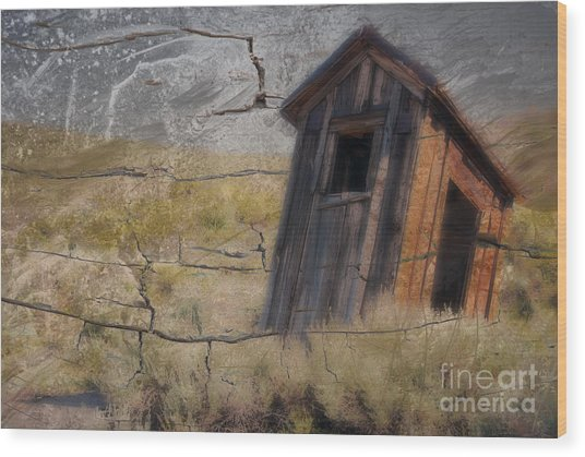 Western Outhouse Wood Print by Ronald Hoggard