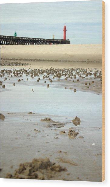 Wet Sands Wood Print by Jez C Self