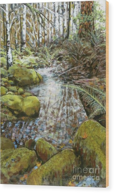 Wet Spot In Woods Wood Print