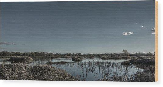Wetlands Desaturated  Wood Print