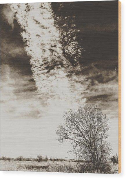 Wetlands Meet Chemtrails Wood Print