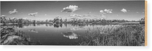 Wetlands Panorama Monochrome Wood Print