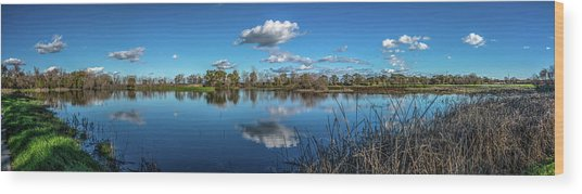 Wetlands Panorama  Wood Print