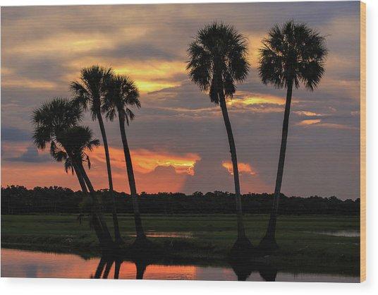 Wetlands Sunset Wood Print