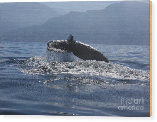 Whale Fluke Wood Print