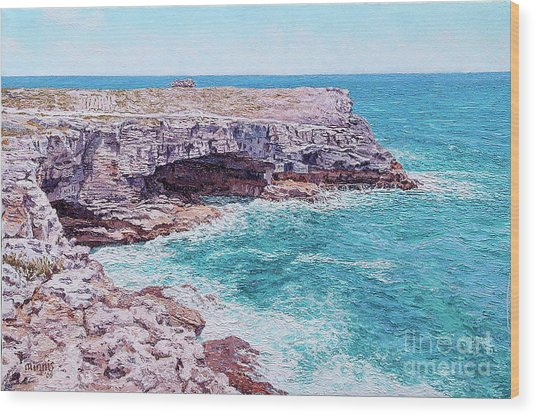 Whale Point Cliffs Wood Print