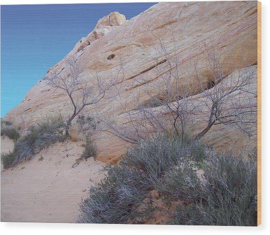 Whale Rock Wood Print