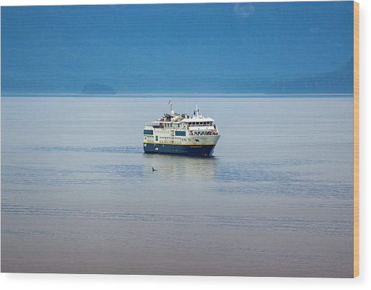 Whale Watching In Glacier Bay Wood Print