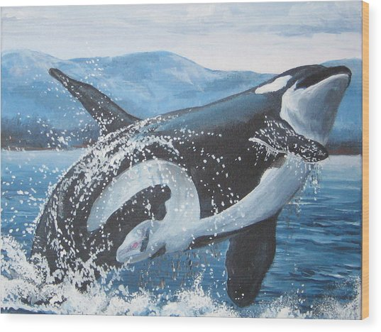 Whale Watching Wood Print by May Moore