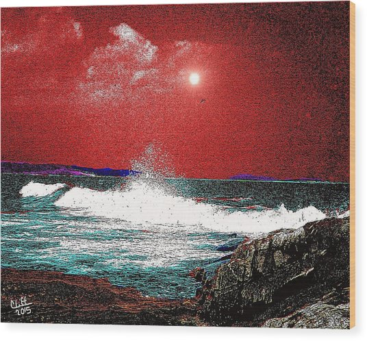 Whaleback At Peaks Island Maine Wood Print