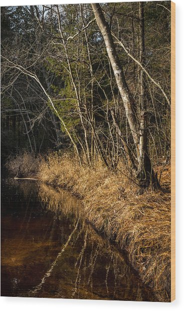 Wharton Forest Fall Wood Print