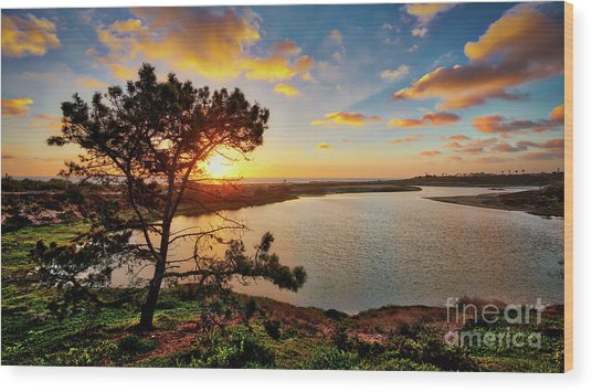 What A Glow At The Batiquitos Lagoon Wood Print