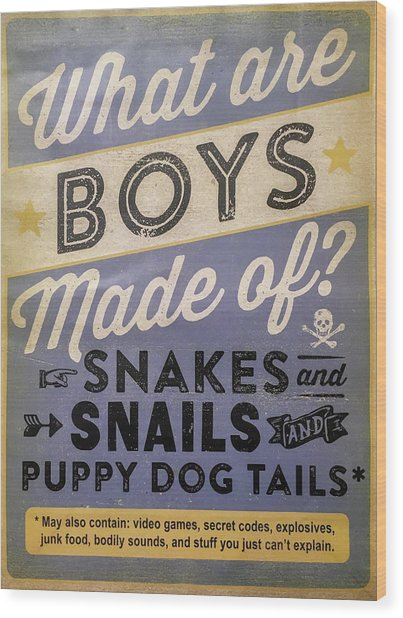 What Are Boys Made Of Signage Art Wood Print