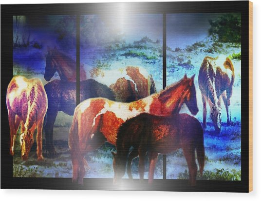 What  Horses Dream Wood Print