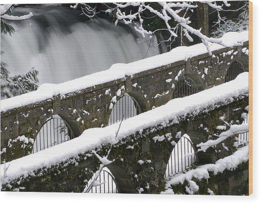 Whatcom Falls Winter 08 2 Wood Print
