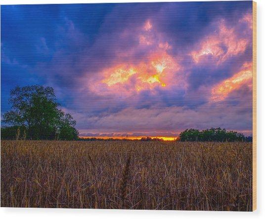 Wheat Field Sunset Wood Print